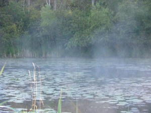 Pond with morning mist evaporating