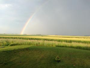 Rainbow over the IL prairie.