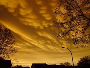Kay Stewart photo following storm
