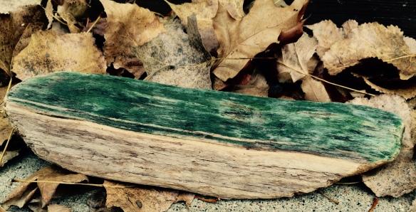 North Shore driftwood