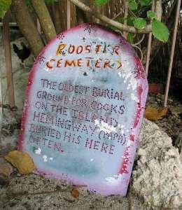 Key West rooster cemetery Ernest Hemingway