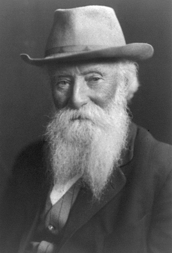 John_Burroughs_1909.jpg